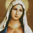 我是圣母天下无敌