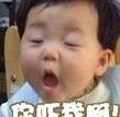 wangchu110