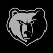 孟菲斯灰熊