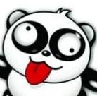 不一样的熊猫