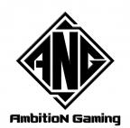 ANG电子竞技俱乐部